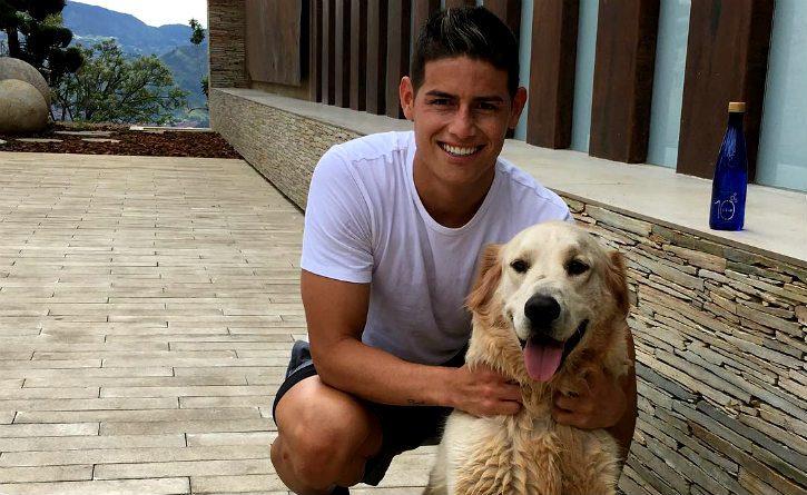 ¿Sabías que James es amante a los perros? Conoce sus 'peluditos'